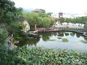 [【纯玩】杭州西湖、西溪湿地、水乡乌镇、宋城2日游]